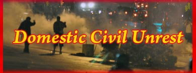 Dealing with Domestic Civil Unrest