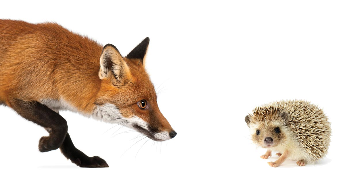 A Chinese Fox against an American Hedgehog in Cyberspace?