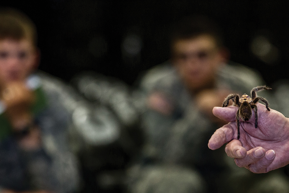 Students of the new Desert Warrior course observe a tarantula during a brief on Chihuahuan animal and plant life June 4 at Fort Bliss, Texas. (Photo by Sgt. Marcus Fichtl/U.S. Army)