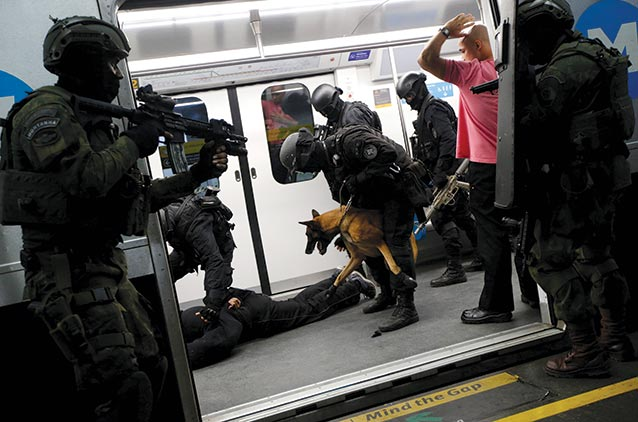 brasilia-metro-dog